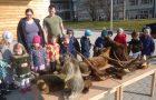 Ogled prepariranih živali v vrtcu