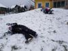 zimski_sporti05